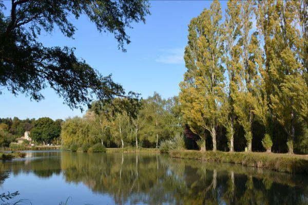 paysage-vaux78B6E899-3D0A-C0A5-9816-DA0190B720EB.jpg